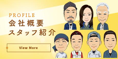 btn_company